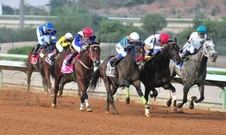 Social media sites pass on the equestrian club races news