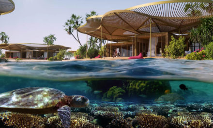 HRH Crown Prince launches stunning nature-inspired designs for gateway island