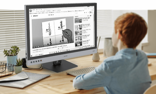 """DASUNG New Release the World First 25.3-inch E-ink Monitor """"Paperlike 253"""""""