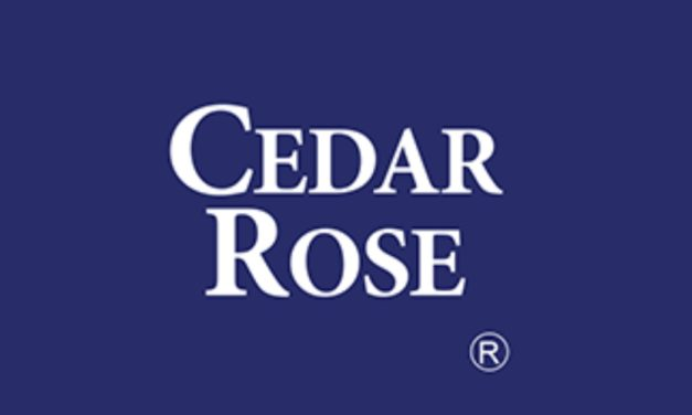 Leveraging on the Latest Technology Cedar Roseto provide Business Risk Assessment Solutions to iXerv